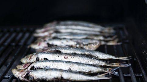 ¿Crees que comer sardinas es bueno para la salud? Te quedas corto
