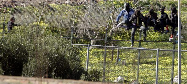 Foto: Varios inmigrantes de origen subsahariano se encaraman a la parte alta de la valla de Melilla. (EFE)