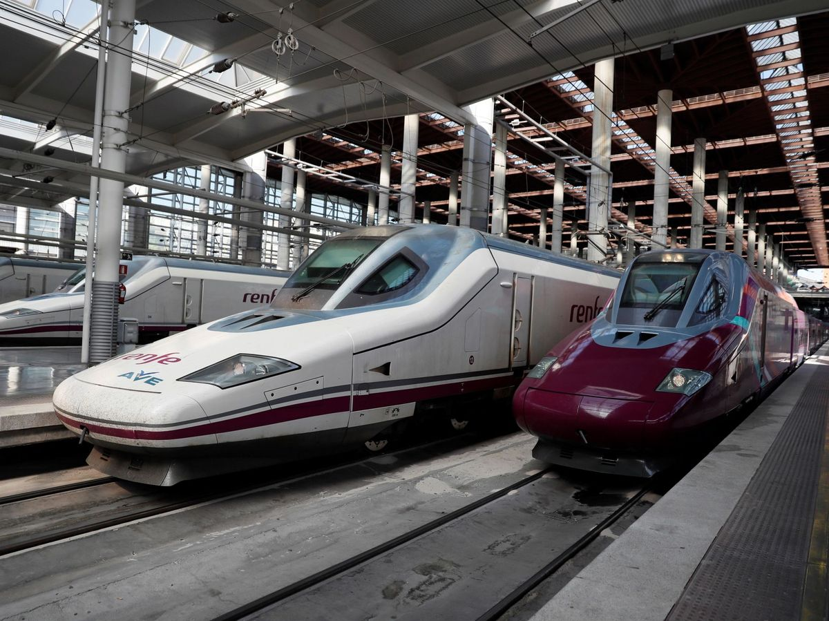 Foto: AVE en la estación de Madrid Atocha. (EFE)