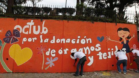 Día del Donante   El altruismo, cosa de ellas: el 70% de los donantes vivos son mujeres