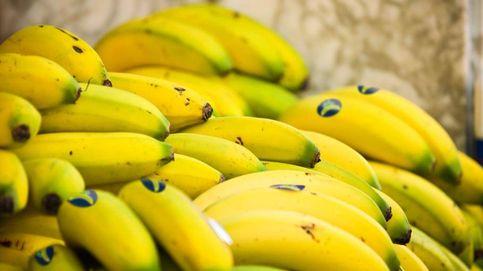 El plátano de Canarias eleva a Bruselas la nueva ley de Planas sobre los precios