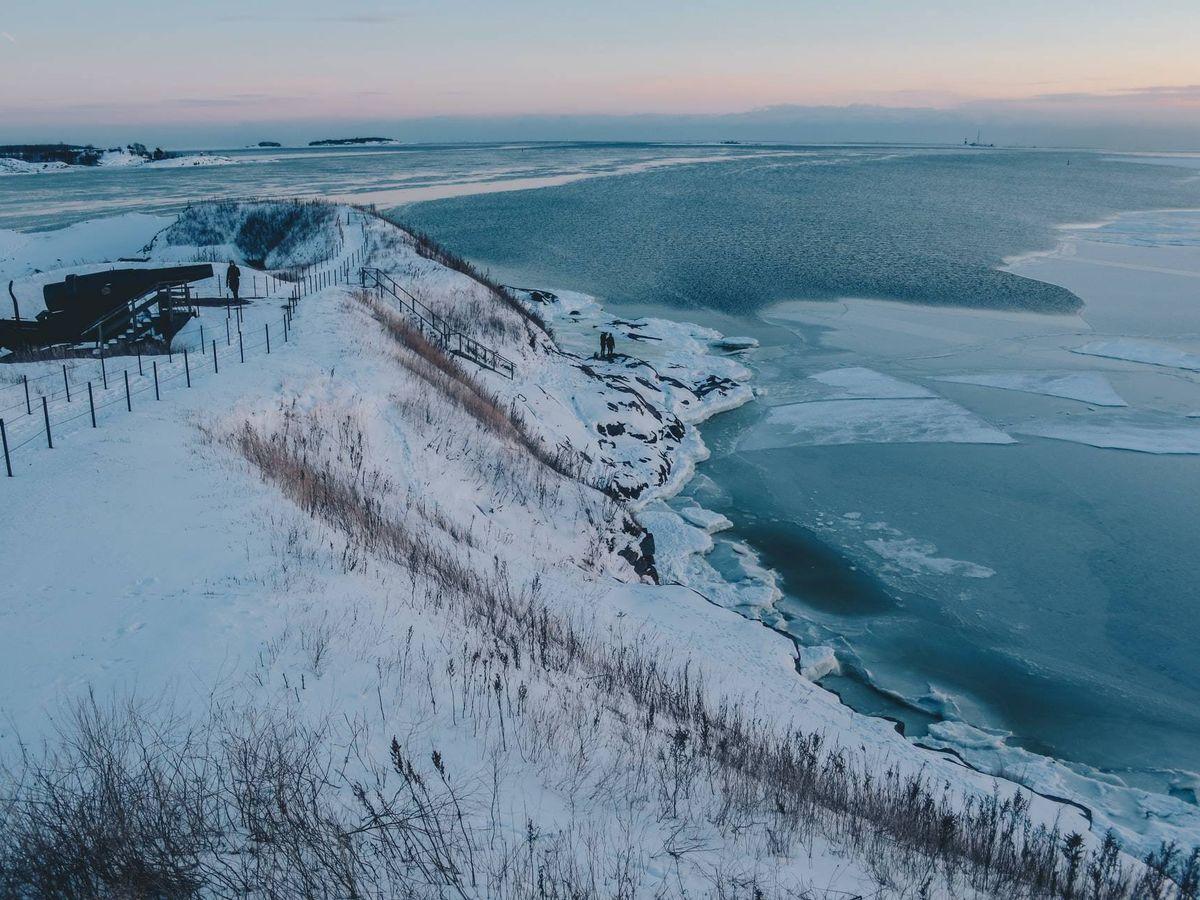 Foto: Un análisis reveló la presencia de un arbusto nativo del norte de Canadá 400 kilómetros más al norte de su ubicación actual (Unsplash)