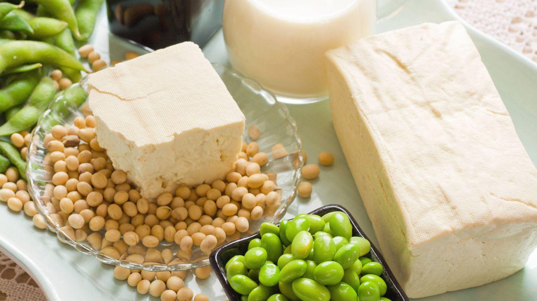 Granos de soja con sus productos derivados como bebida o salsa de soja y tofu. (iStock)