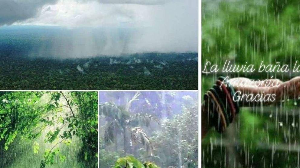 ¿Llueve en el Amazonas? De un fuerte deseo a una noticia falsa sobre los incendios