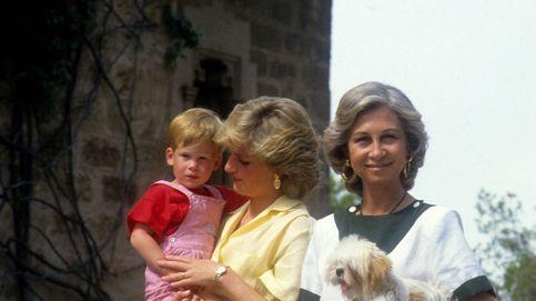 La familia real, sus mascotas y el criadero de perros de don Juan Carlos