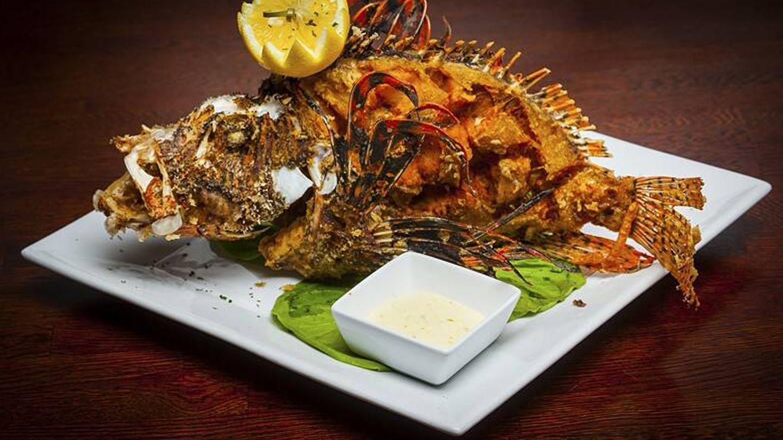 Pez león frito, una nueva receta cada vez más popular en las costas de Florida.