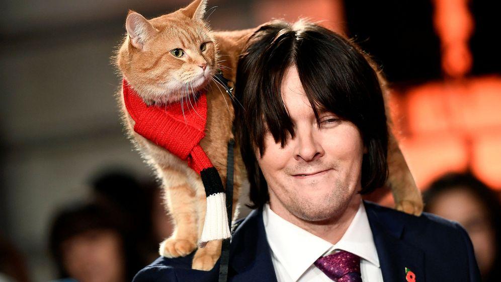 Foto: El gato Bob posa con su dueño James Bowen en Londres a finales de 2016 en el estreno del film basado en su historia (Dylan Martinez/REUTERS)