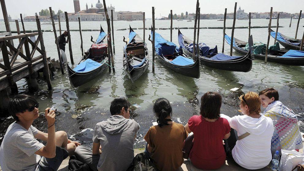 Venecia se prepara para la marabunta: cierra calles y desvía cruceros