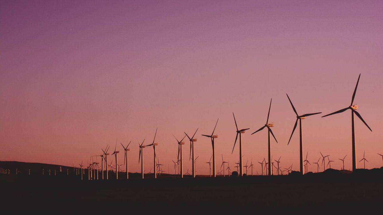 Las energías renovables fueron la fuente de energía más barata del mundo en 2020