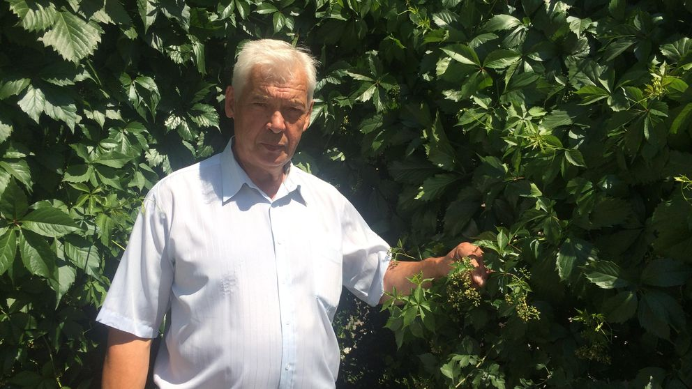 Este hombre cultiva en su 'dacha' las verduras que Moscú prohíbe importar de España