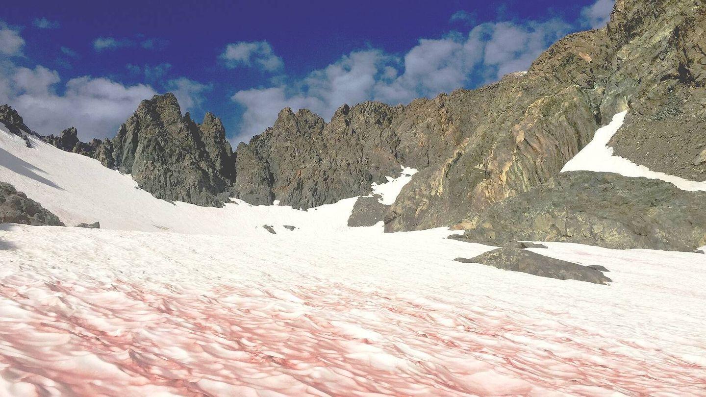 Coloración de la nieve en los Alpes.