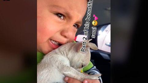 Un niño no puede reprimir las lágrimas al ver cómo vacunan a su mascota
