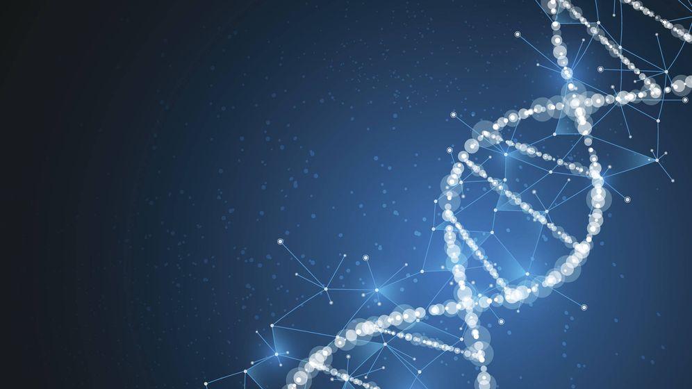 Foto: La genética puede ayudar a combatir la obesidad. (iStock)