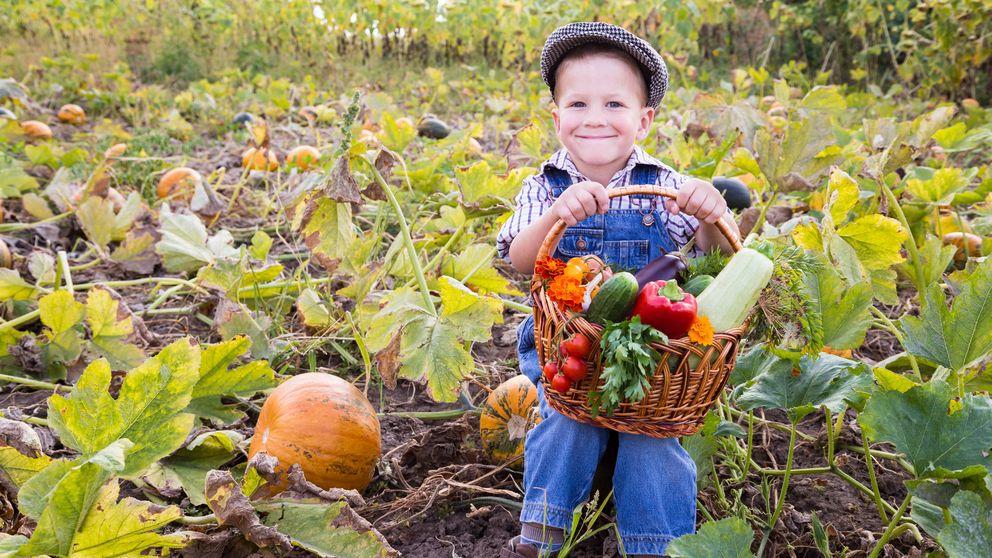 Efecto Popeye: trucos para que los niños tomen verduras
