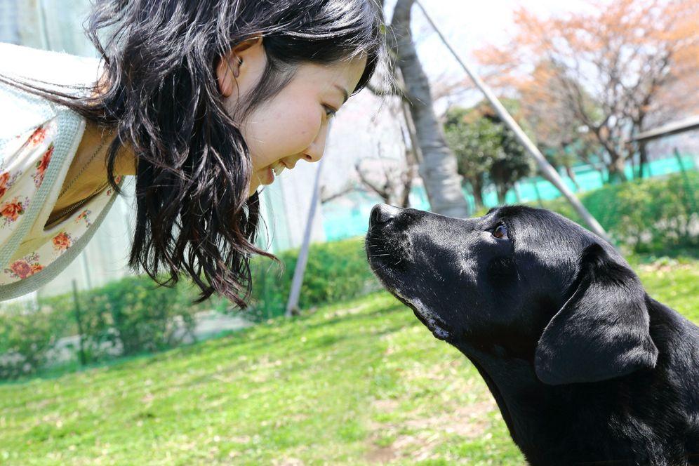 Foto: (Foto: Mikako Mikura)