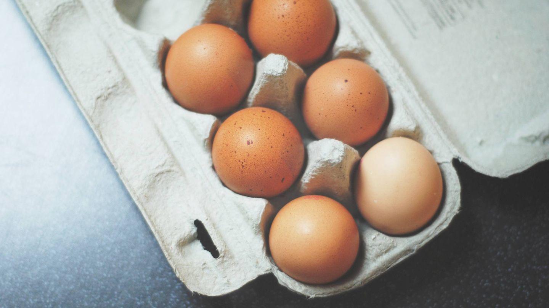 Los huevos, mejor si reciben calor por todos lados.