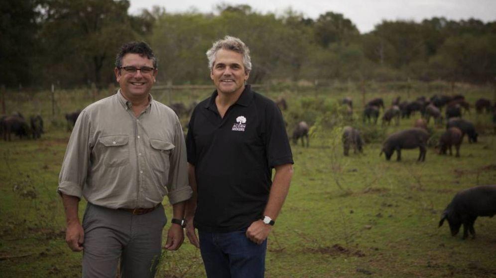 Foto: Manuel Murga (i) y Sergio Pascual (d), junto a sus cerdos, en una granja de Texas. (Fotos: Acornseekers)