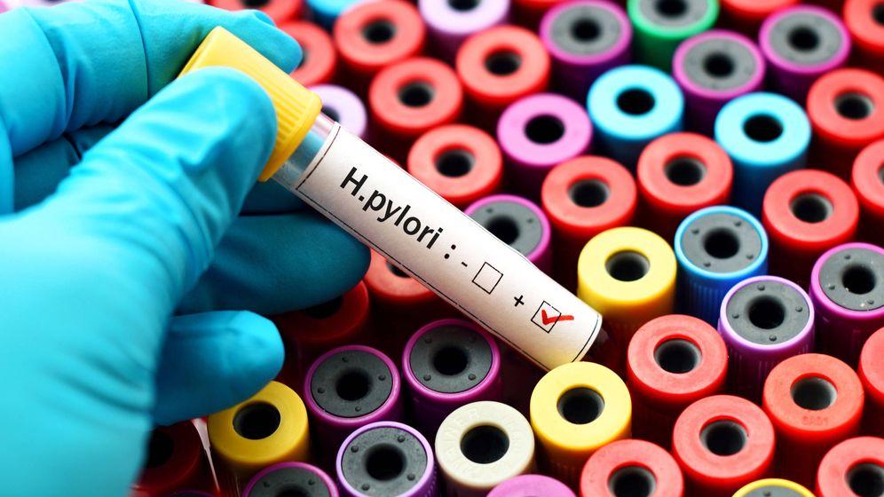Foto: La bacteria Helicobacter pylori es un riesgo para nuestra salud. (iStock)
