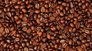 Las exportaciones de café de nueve países latinoamericanos caen un 10,92% en nueve meses
