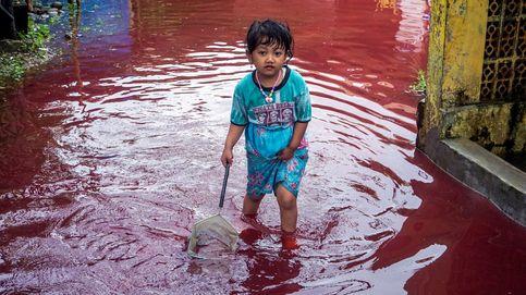 La vacunación en Río de Janeiro y las protestas en Myanmar: el día en fotos
