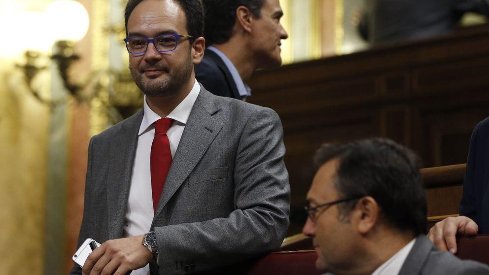 El aplauso de Pedro, el rifirrafe de PP y la izquierda pura y los tacos de Rivera
