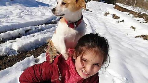 Una niña camina 2,5 kilómetros sobre la nieve para llevar a su perro al veterinario