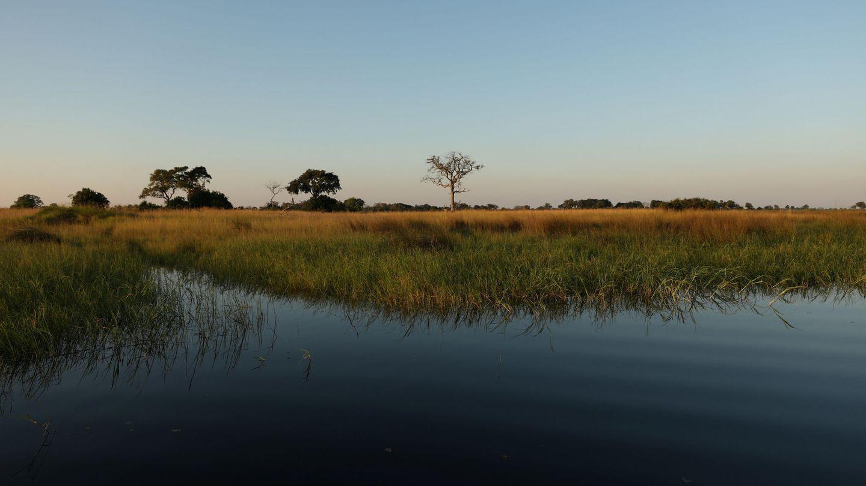 El Delta de Okavango, en Botswana. (Reuters)