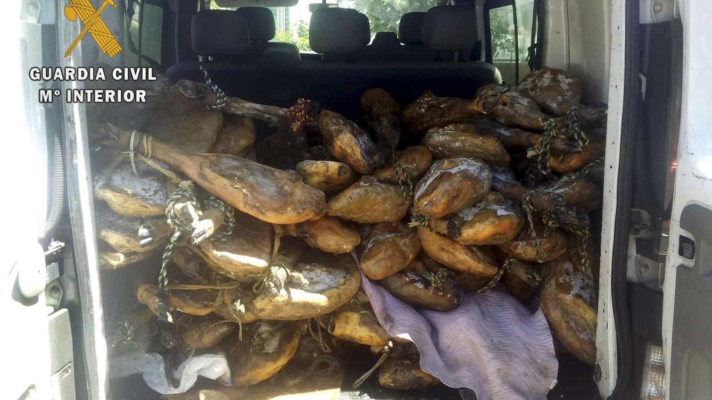 Moho, excrementos y cadáveres de rata: el dantesco relato del veterinario del jamón