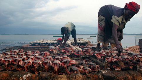 Cómo una pescadora africana logró erigir un pequeño imperio