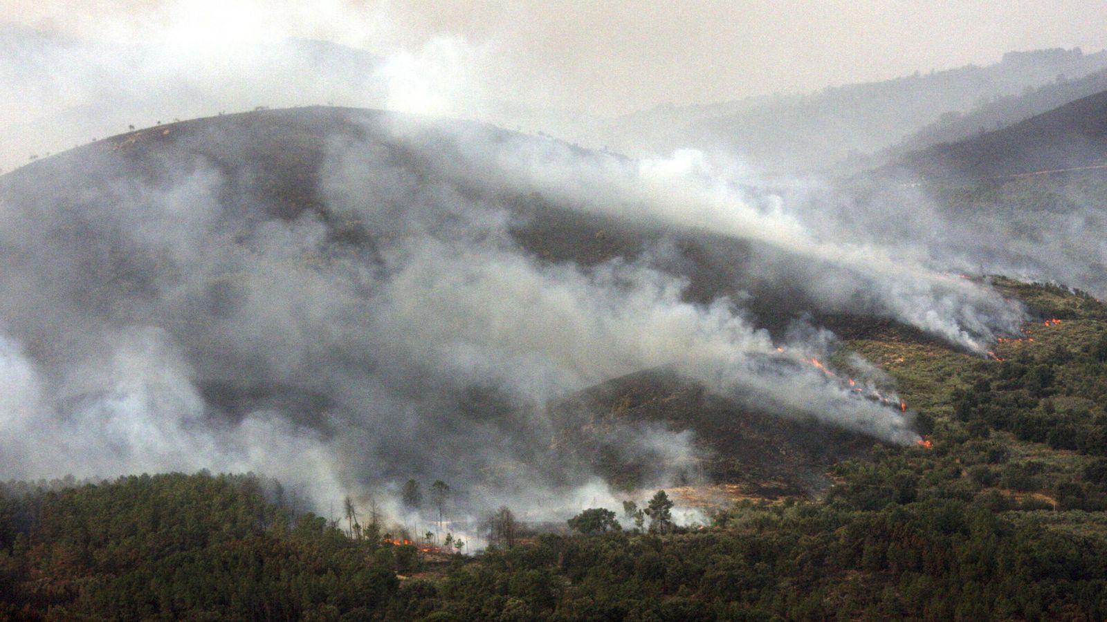 Foto: Uno de los frentes del incendio de la Sierra de Gata, en el término de Acebo (Cáceres). (EFE)