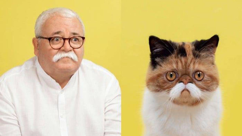 Este fotógrafo revela lo parecido que son los gatos a sus dueños