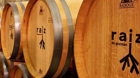 Bodegas Raíz: tradición e innovación en Ribera del Duero