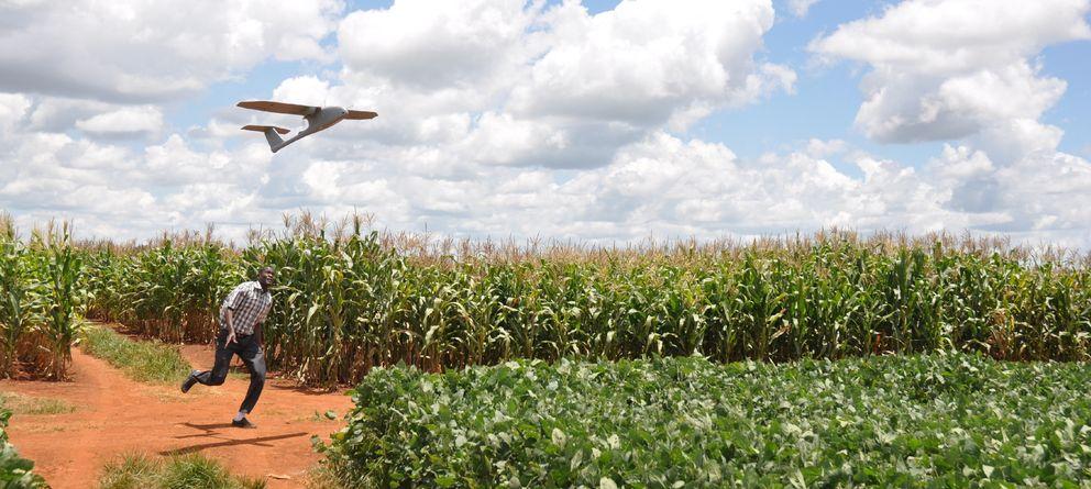 Foto: Alta tecnología española para mejorar los cultivos en África y Latinoamérica