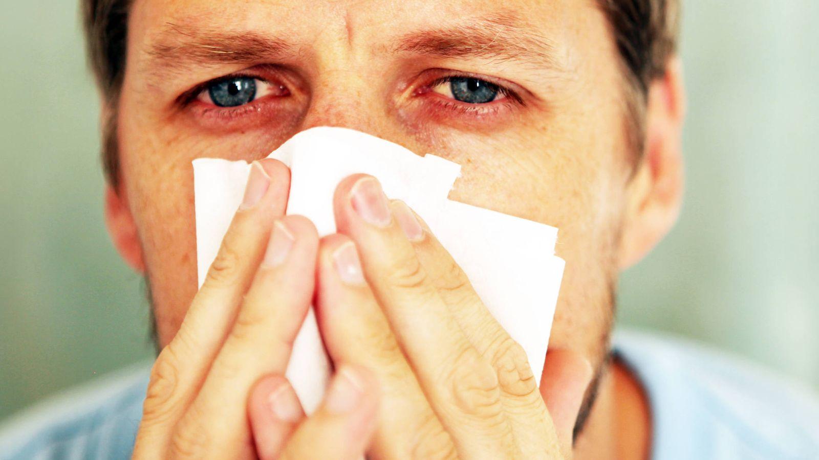 Salud: Remedios caseros para aliviar los síntomas de la alergia