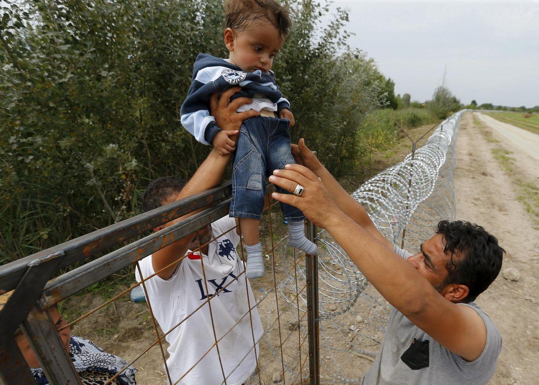 Foto: Refugiados sirios superan la valla fronteriza entre Serbia y Hungría cerca del pueblo de Asotthalom, el 25 de agosto de 2015 (Reuters).