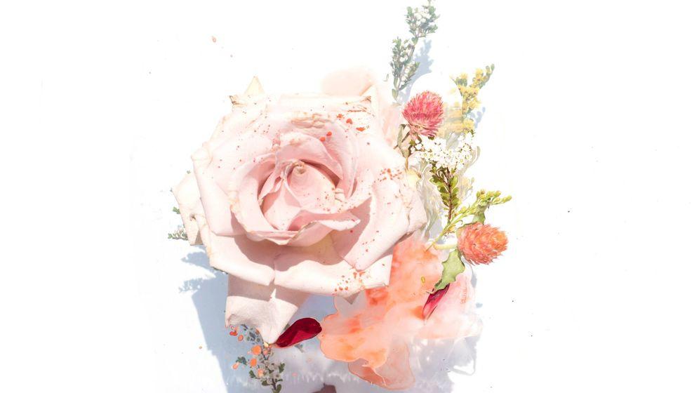 Foto: Los beneficios de la rosa son incalculables. (Evie Schaffer para Unsplash)