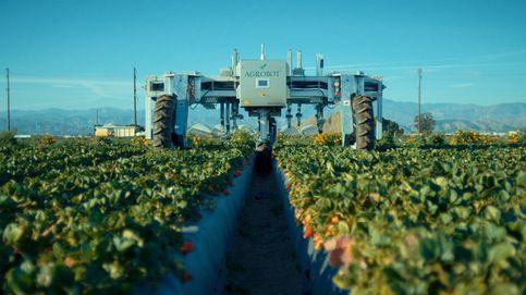 Las nuevas máquinas que sustituirán a los agricultores y jornaleros