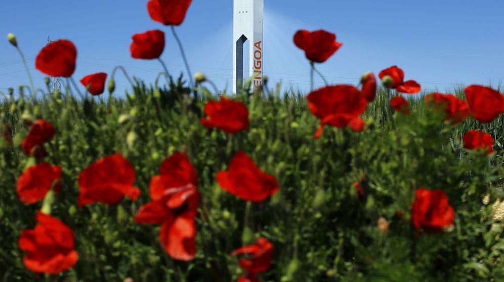 Foto: Torre de Abengoa (Reuters)