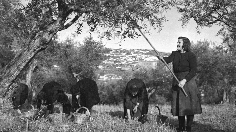 España, 1940. (TopFoto / Cordon Press)