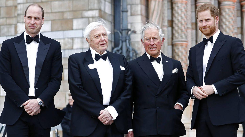 El príncipe Carlos, con Guillermo y Harry en la premiere de 'Our Planet'. (Getty)