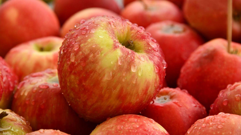 Dieta de la manzana para adelgazar. (Shelley Pauls para Unsplash)