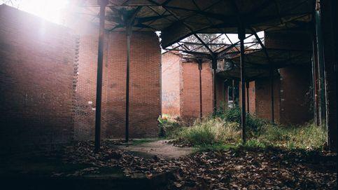 De edificio de prestigio a refugio para gatos: la ruina del pabellón de los hexágonos