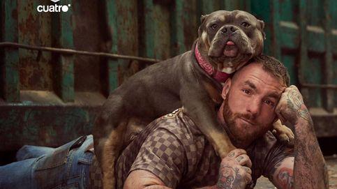 La defensa y la protección animal llega a Cuatro con 'A cara de perro'