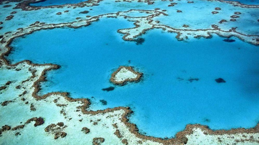 Foto: Gran Barrera de Coral.