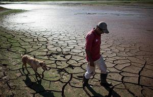 Brasil busca agua bajo las piedras, asolada por una sequía bíblica