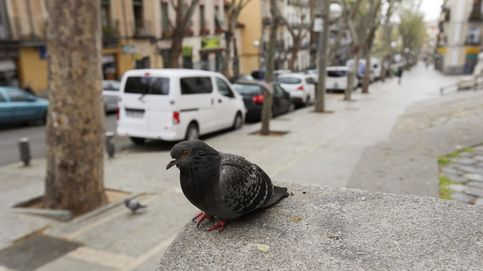 Coronavirus en Las Vegas y regresan los españoles de Ecuador: el día en fotos