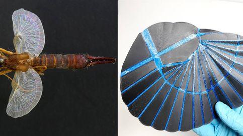 Inventan unas potentes alas artificiales inspiradas en el 'cortapichas' y el origami
