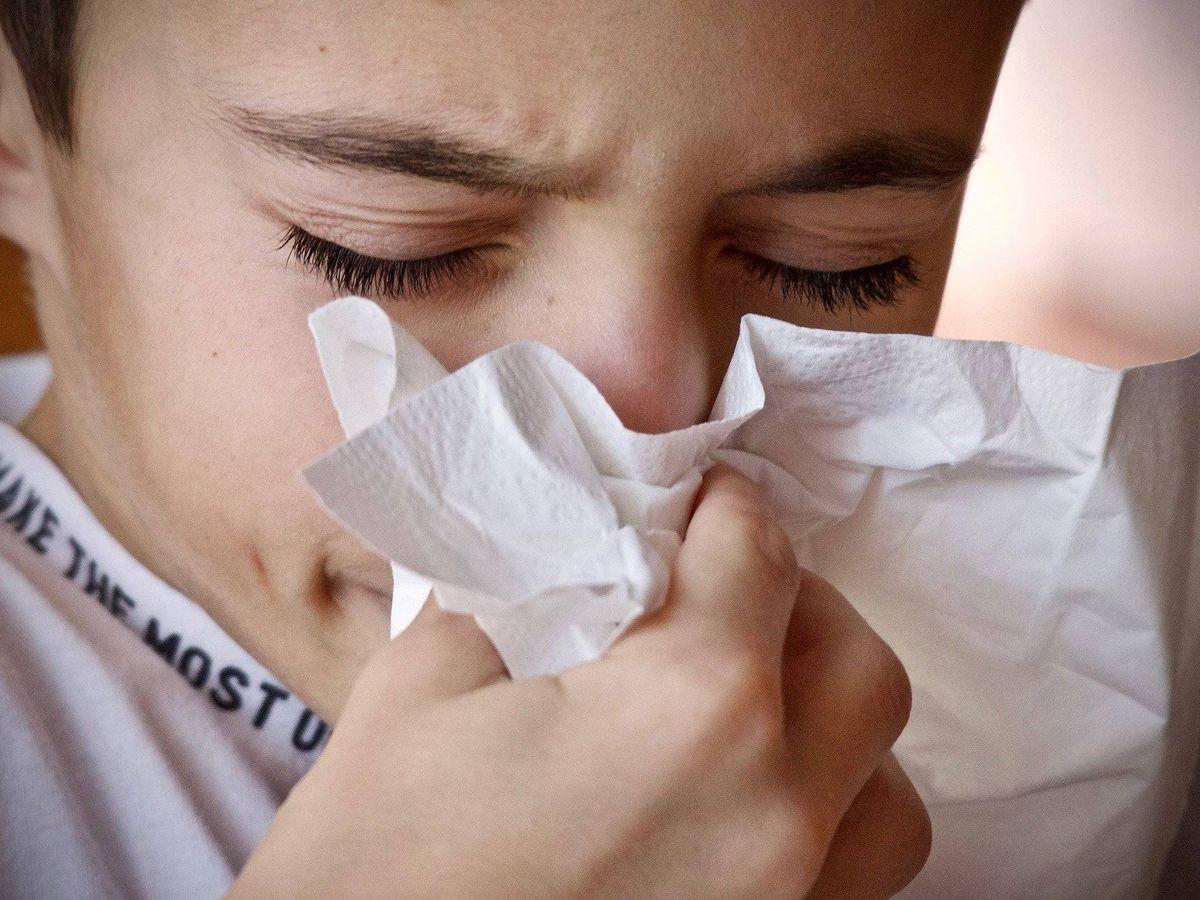 Foto: Una lesión en el revestimiento nasal,causada por resfriados o alergias, puede aumentar la invasión bacteriana. Foto: Pixabay