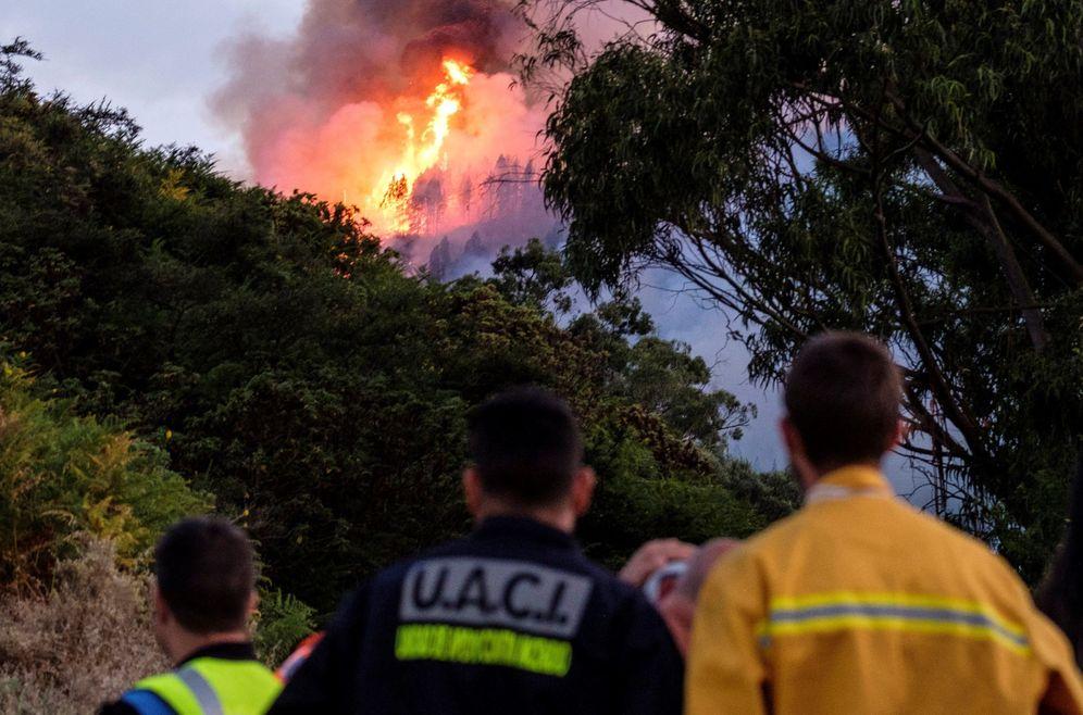 Foto: Un dispositivo de emergencia trabaja en la extinción de un incendio en el municipio de grancanario de Valleseco. (EFE)