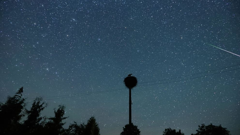 Perseidas 2020: las mejores noches para ver el máximo de la lluvia de estrellas